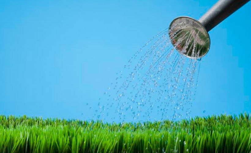 la-importancia-del-riego-en-el-mantenimiento-de-jardines
